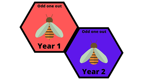 Year 1 and 2 - Odd One Out