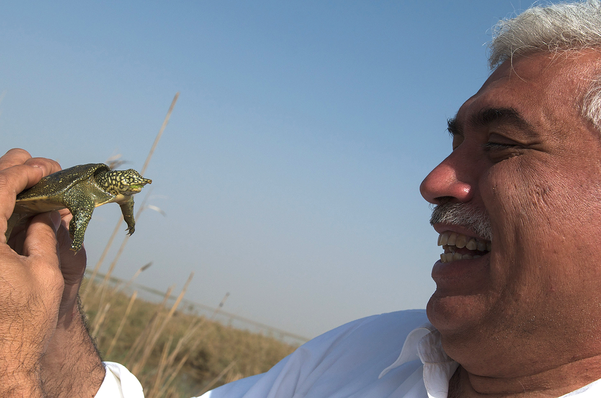 Miracle in the Marshes of Iraq