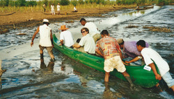 In Madagascar 1.jpg