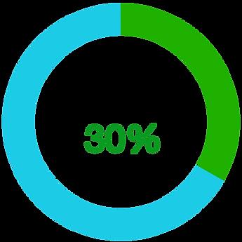 EUS%20Progress%2030%25_edited.png