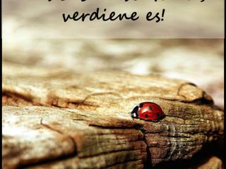 Das Leben (13) : Das Leben ist...