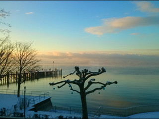 Das Leben (6) : ... Meditation am Bodensee