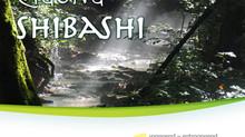 Buch : TaiChi Qigong - Shibashi