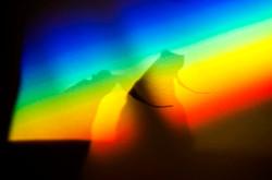 shadows on the rainbow?