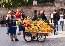 Fruit barrow man.jpg