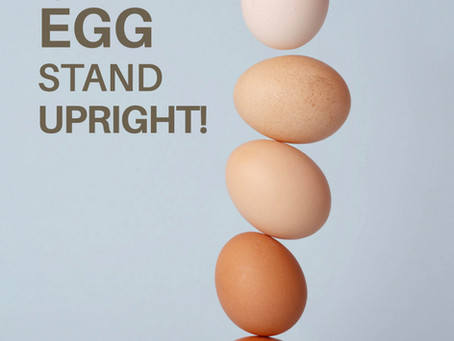 Try to make this Egg stand upright!