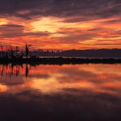 Alba lago gherardesca-01-12-19.jpg
