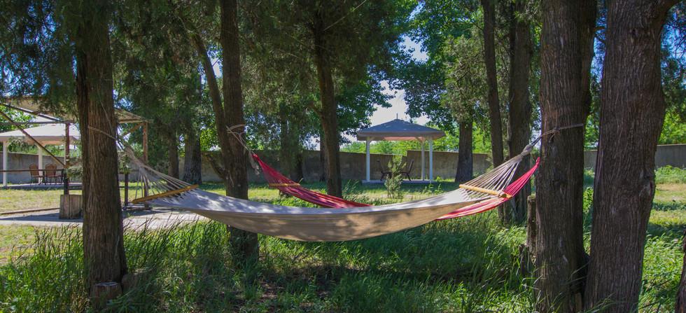 Отдых на природе летом