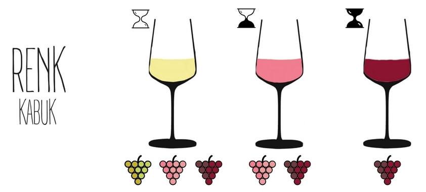 renk şarap wine somelyer