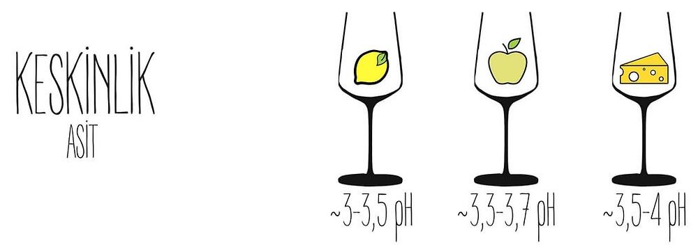 keskinlik şarap wine somelyer