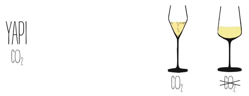şarap yapı wine somelyer