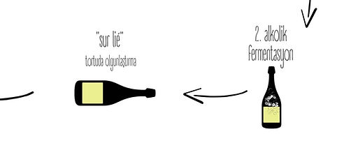 Köpüklü şarap şampanya Nasıl Yapılır şarap Türkiye Somelyer