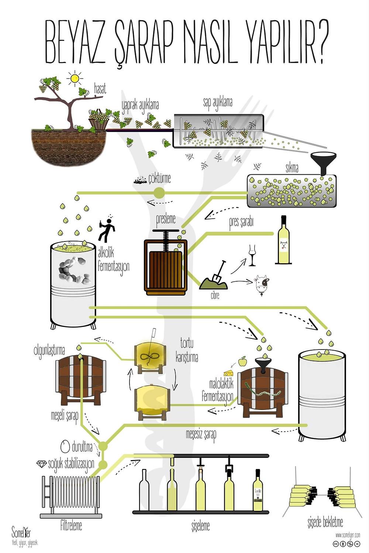 beyaz şarap yapımı white winemaking sommelier somelyer