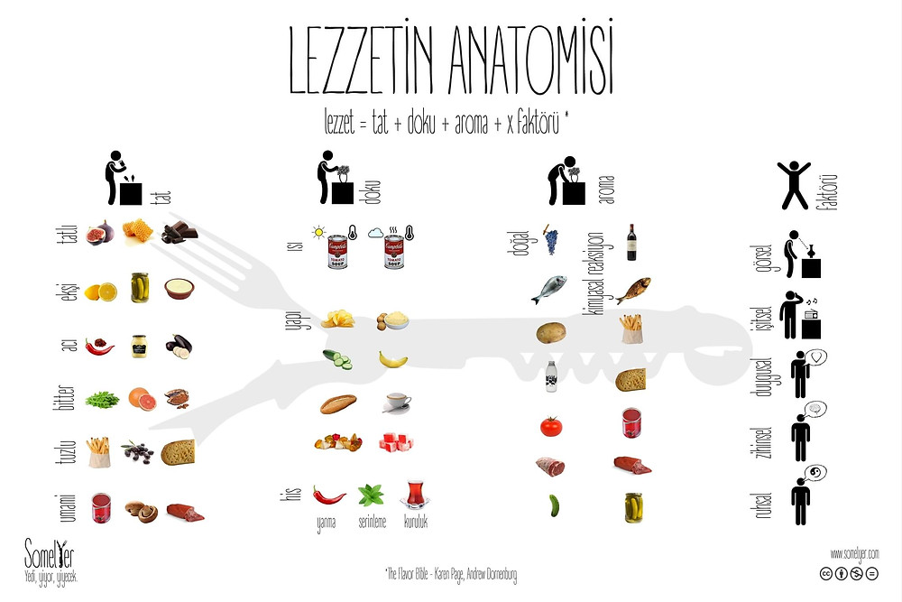 lezzet tat aroma şarap flavor taste aroma wine sommelier somelyer