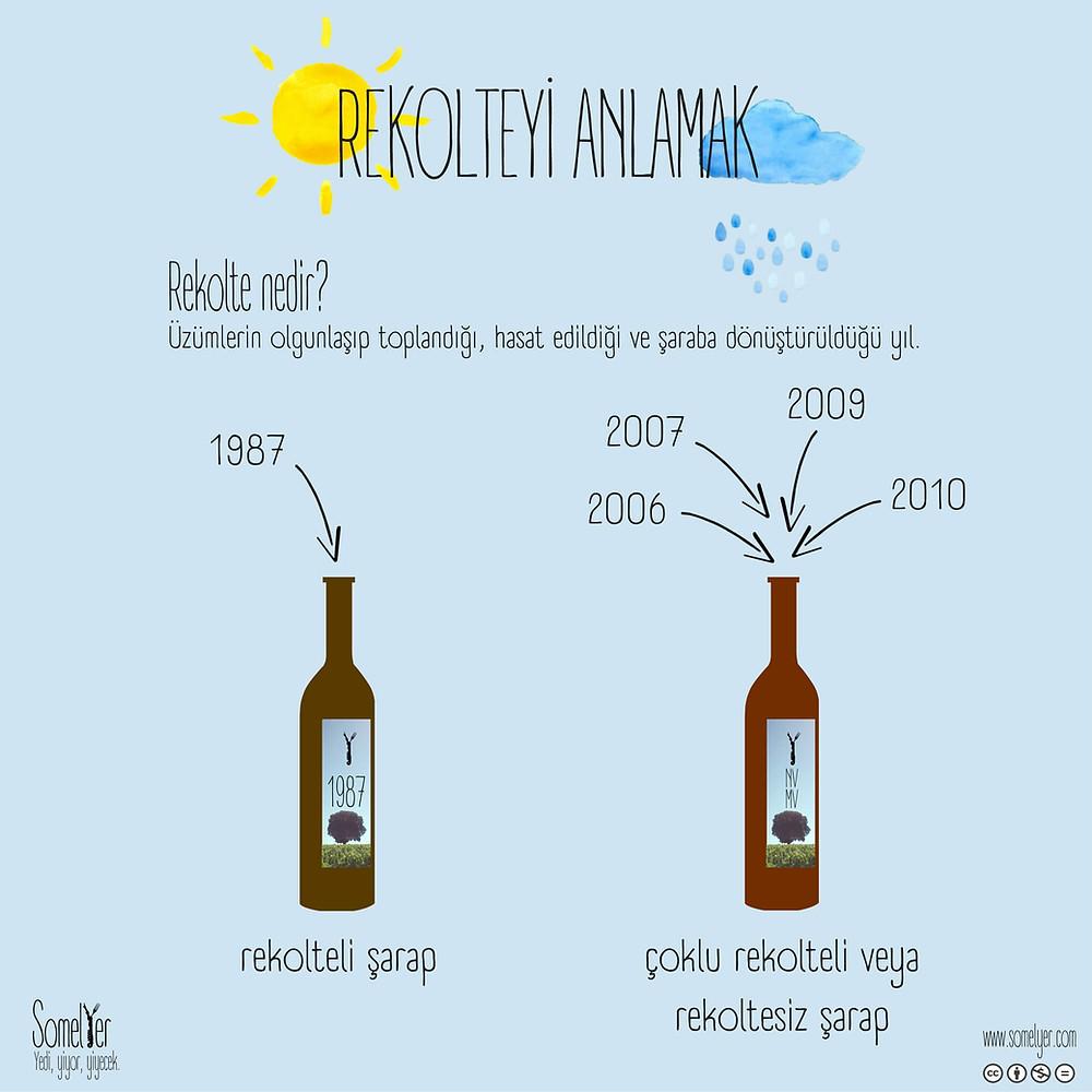rekolte şarap vintage wine somelyer