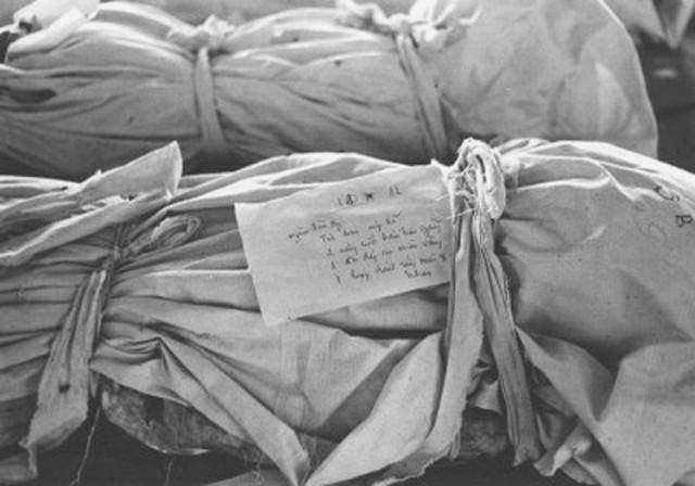 Biodegradable burial shrouds