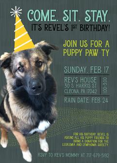 Revel 1st Birthday-01.jpg