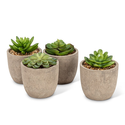 Artificial Succulent in round pot