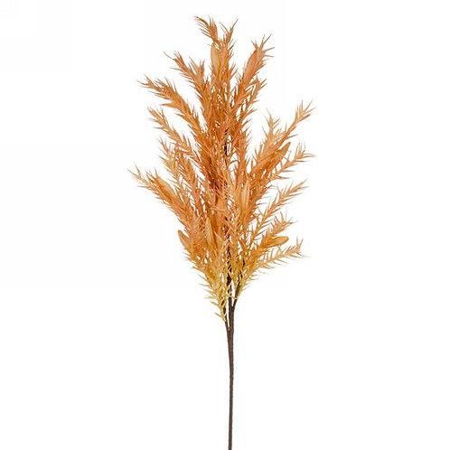 Yellow-orange graminae stem