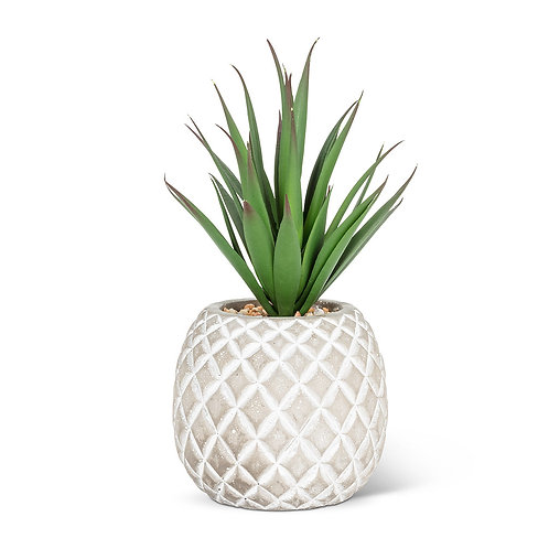 Artificial Succulent in Pineapple