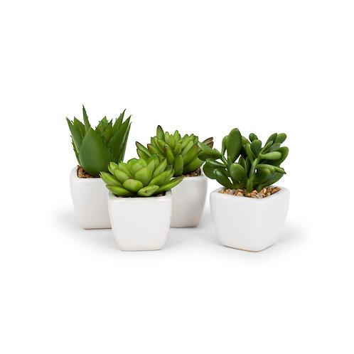 Artificial Succulent in square white pot