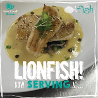 lionfish serveing.PNG