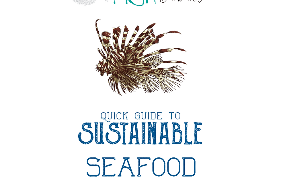 Sustainable Seafood Guide (printed)