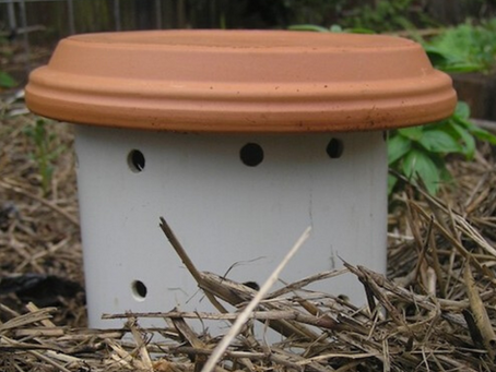 How to Make: A Worm Composter