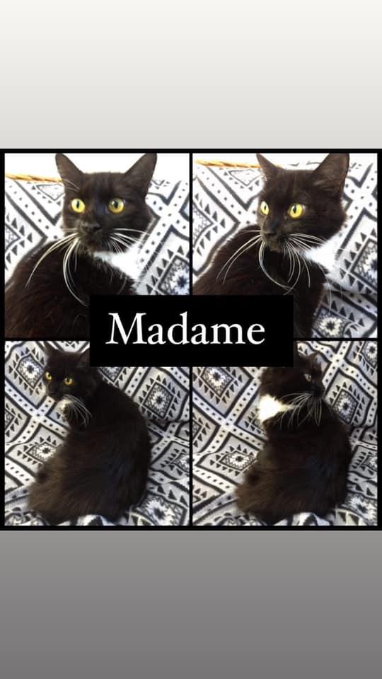 madame.jpg