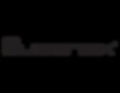 Queenax Logo Dark 2x.png