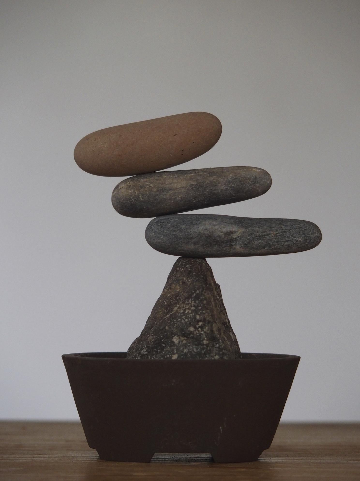 つるりとした石たち