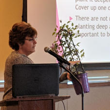 Feb. Lunch Speaker: Kathy Donahue Nass Speaking on Growing and Caring For Clematis