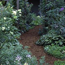 Organic Cottage Garden