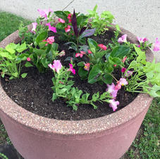 Summer Flowers Planter on Bridge Square
