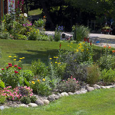 Mixed Flower Bed
