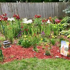 Garden Tour, lillies