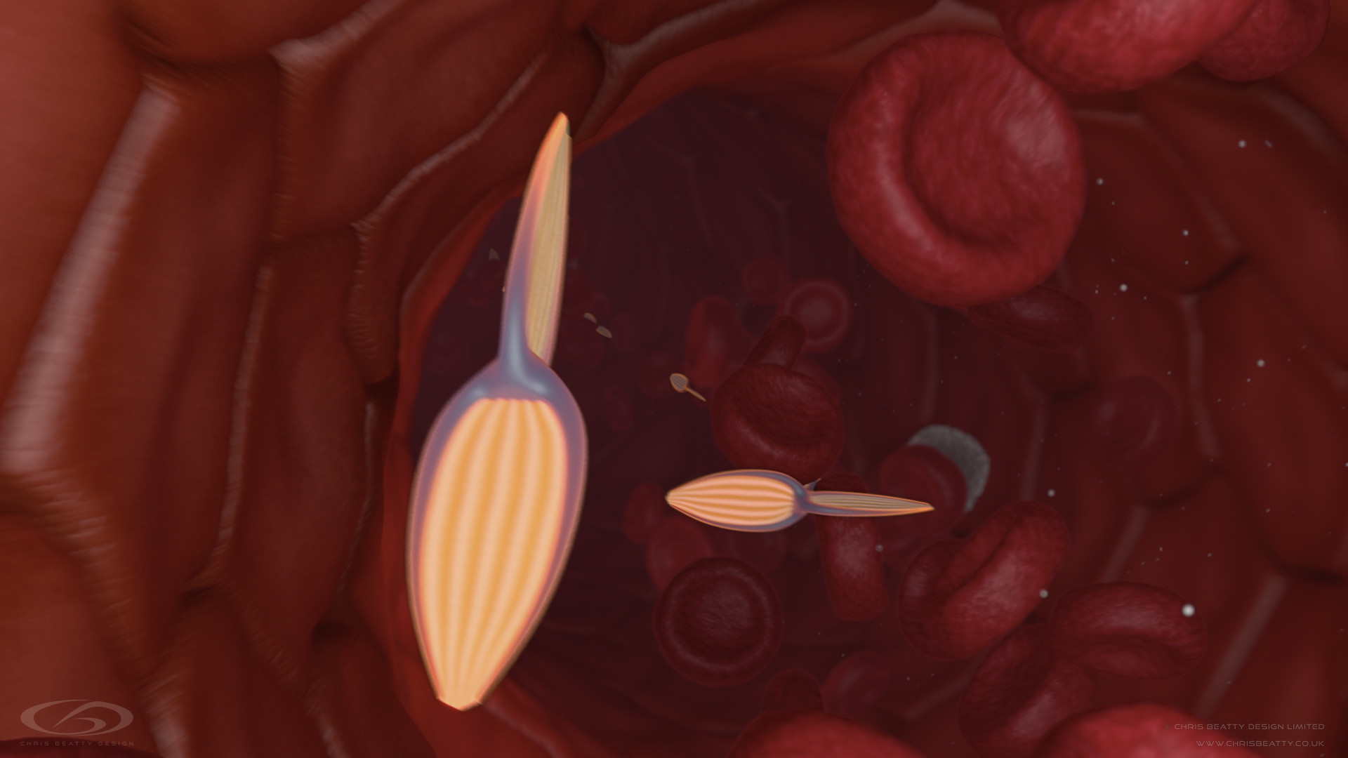 Medical 3d Animation