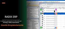 Radix ERP - business software per l'office automation