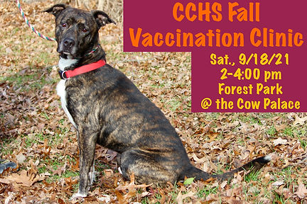 Fall Vaccination Clinic