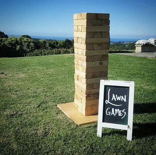 Beautiful day for a engagement party at