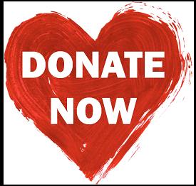 Donate-Now-Heart V&B white.png