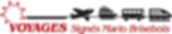 Logo VSMB.png