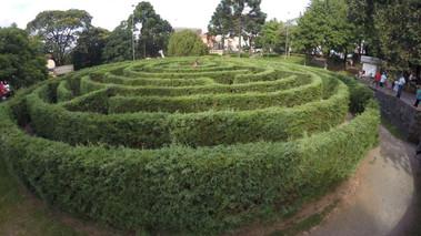 labirinto verde.jpg