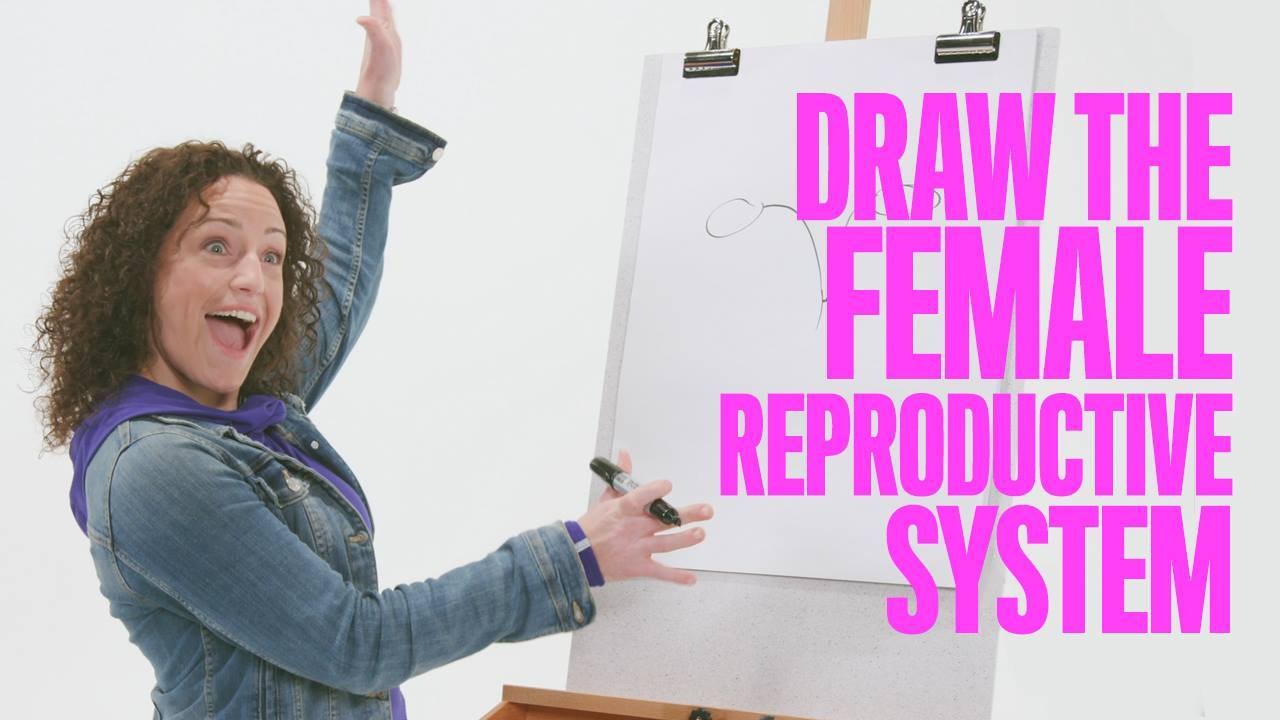 Workin' Moms Ask: Draw the Female Reproductive System