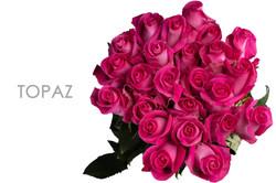TOPAZ-CAPTION-BOUQUET