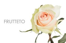 FRUTTETO-REAL-2