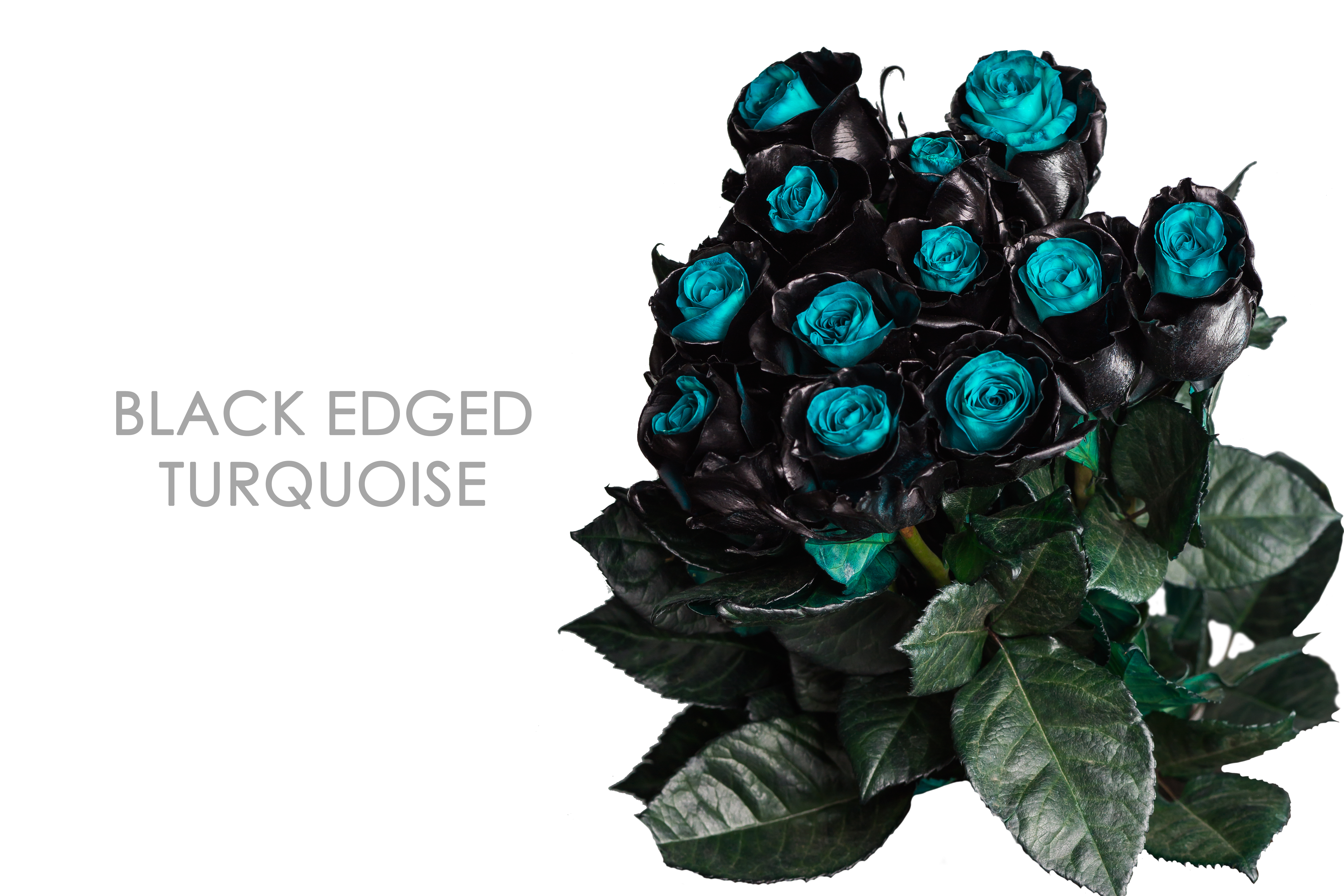 BLACK-EDGED-TURQUOISE-BOUQUET