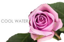 COOL-WATER-CAPTION-UNIDAD
