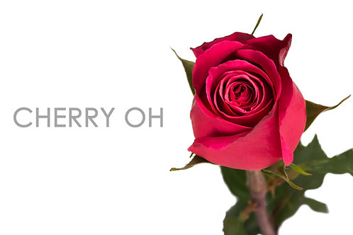 CHERRY OH