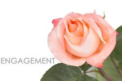 ENGAGEMENT-CAPTION-UNIDAD